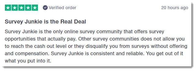 Survey junkie user review