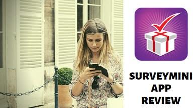 surveymini review