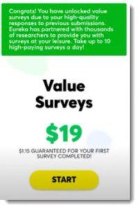 value surveys